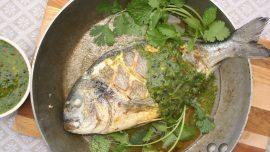 Helstekt fisk med chimichurri på passionsfrukt