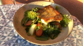 Stekt gös med vårgrönt, rostad morot och sardellsmör