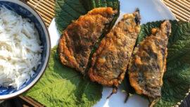 Koreanska dumplings av bladmynta och fläsk